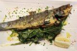 Anogi Restaurant | Imerovigli Santorini - Dish 03