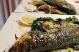 Anogi Restaurant | Imerovigli Santorini - Dish 22
